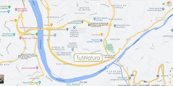 Banner Tutinatura Mapa Coimbra Boton D